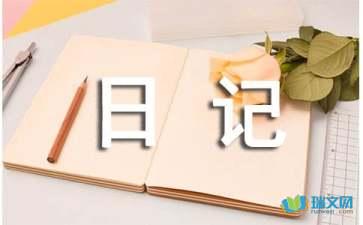 关于实践活动日记300字范例赏析