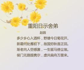 关于重阳节的词语或者诗句段大全
