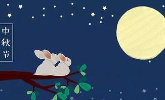 关于月亮的情诗句大全