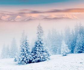 关于诗歌中雪的诗句大全